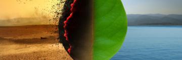 Wie das Coronavirus dem Klima hilft